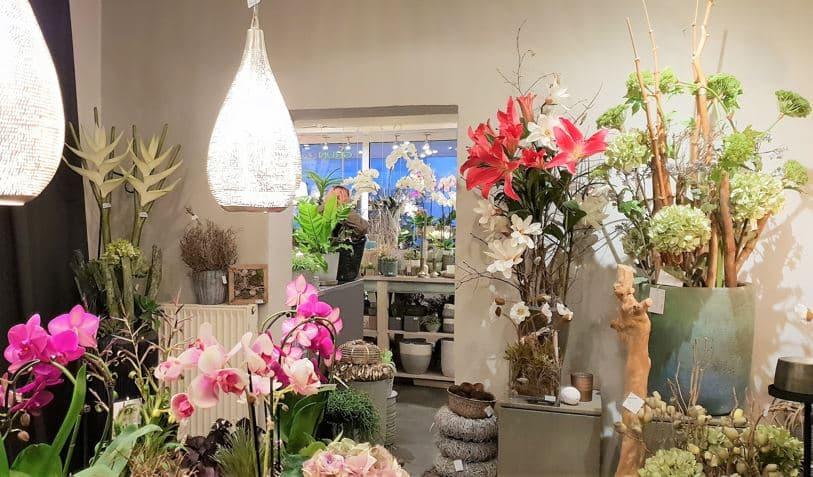 Style Hannover Grünraum 02 - Grünraum - Blumen & Geschenke