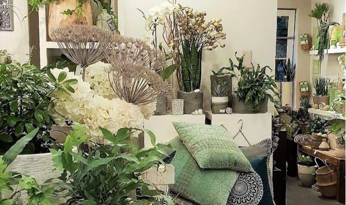 Style Hannover stellt Grünraum vor