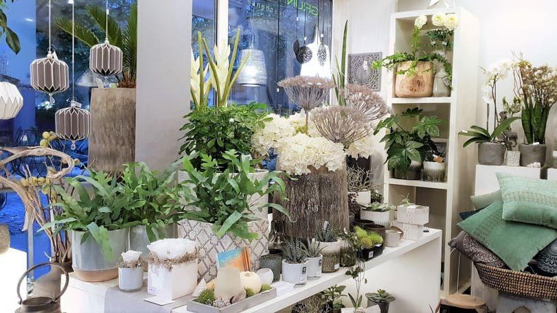Style hannover Grünraum 01 - Grünraum - Blumen & Geschenke