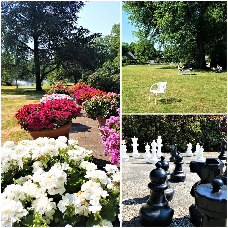 Style Hannover Collage Stadtgarten 4 - Warum in die Ferne schweifen - der Stadtpark am HCC