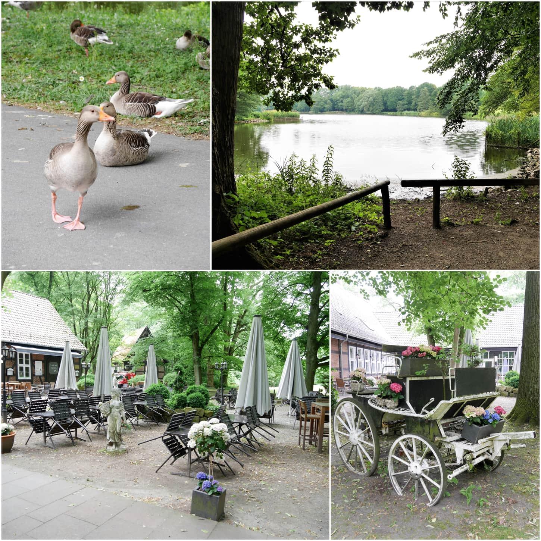 """Style Hannover alte Muehle KBW Collage 2 - Die """"Alte Mühle"""" im Hermann-Löns Park"""