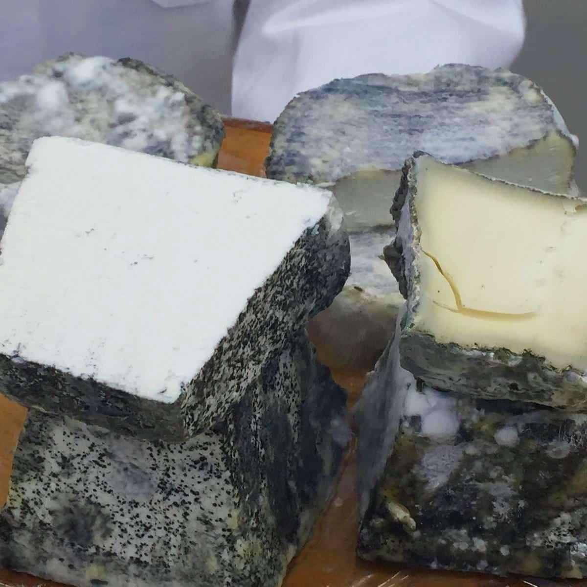 style hannover kaese schaub 7 - Käse-Schaub - Käse voller Tradition