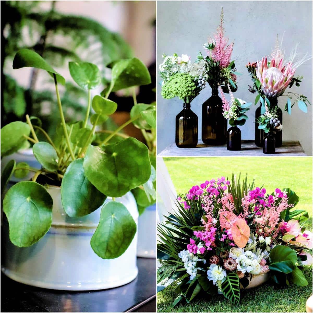 Style Hannover Millers Fleurs Collage - Milles Fleurs - moderne Blumensträuße