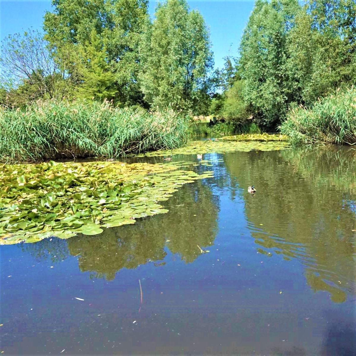 Style Hannover Park der Sinne 21 - Park der Sinne: Intensives Wahrnehmen auf 7 Hektar