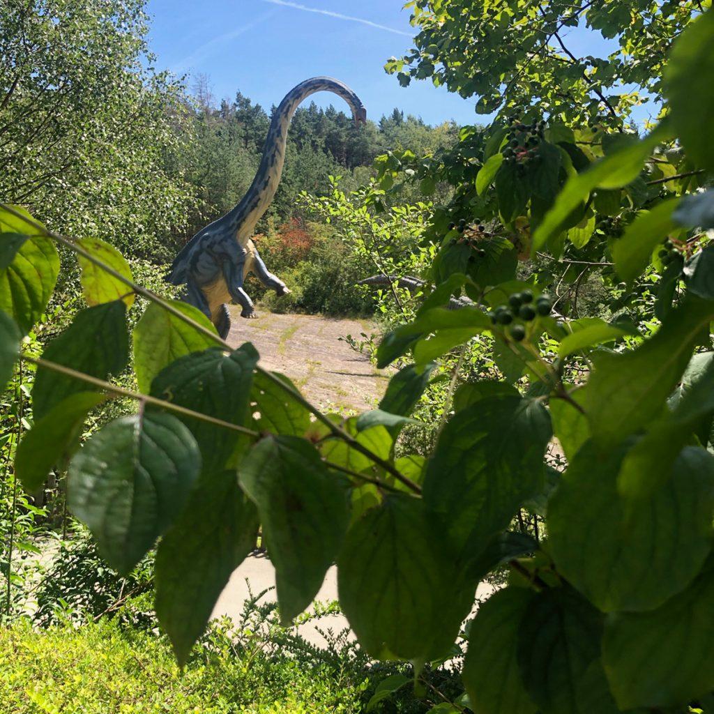 Style Hannover Dinopark Muenchehagen 08 1024x1024 - Dinopark Münchehagen - Urzeit für die ganze Familie