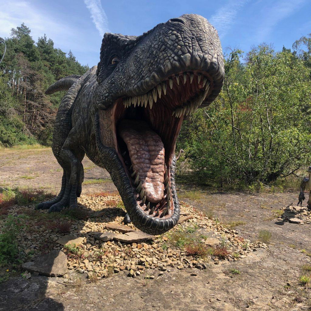 Style Hannover Dinopark Muenchehagen 09 1024x1024 - Dinopark Münchehagen - Urzeit für die ganze Familie