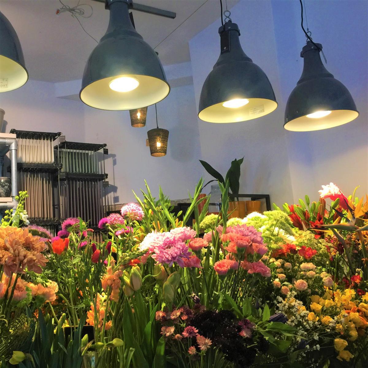 style hannover indigo Blumen 5 3 - Indigo Blumenladen - Blumen wohin das Auge reicht