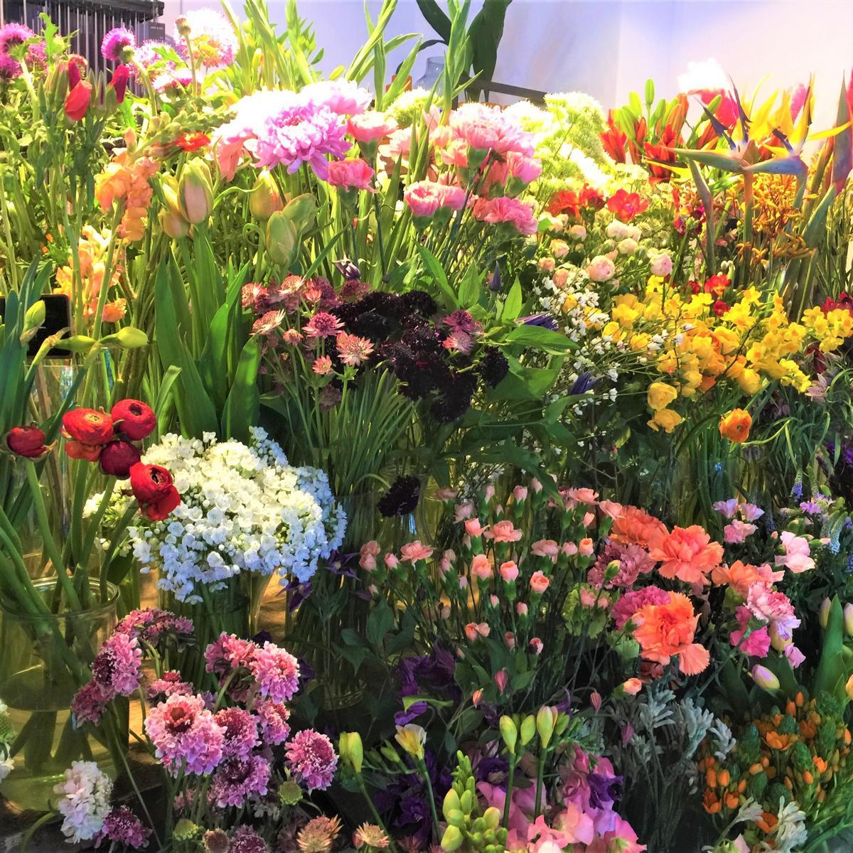 style hannover indigo Blumen 6 3 - Indigo Blumenladen - Blumen wohin das Auge reicht