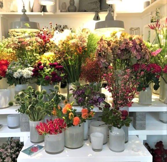 style hannover indigo Blumen B2 2 577x560 - Indigo Blumenladen - Blumen wohin das Auge reicht
