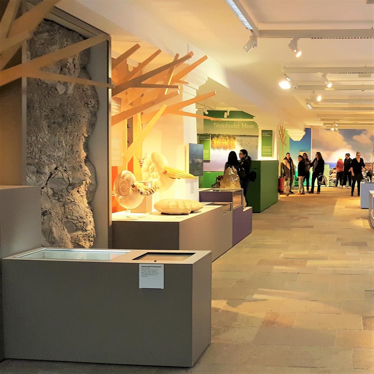 Style Hannover NaturWelten Landesmuseum 1 - NaturWelten - die ständige Ausstellung im Landesmuseum