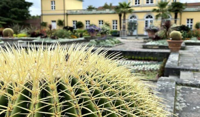 style hannover berggarten B 680x400 - Herrenhäuser Gärten – Berggarten